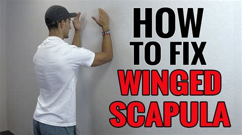 3 Exercises You Can Do To Fix Winged Scapula - YouTube